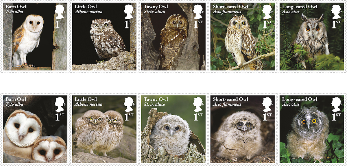 Owls to return to GB stamps in May 2018