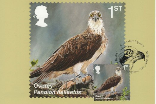 Reintroduced Species Stamp Cards Front image 1