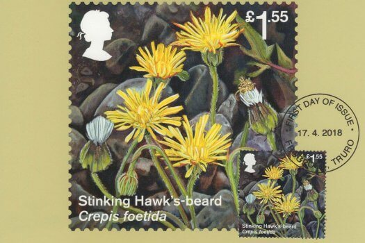 Reintroduced Species Stamp Cards Front image 2