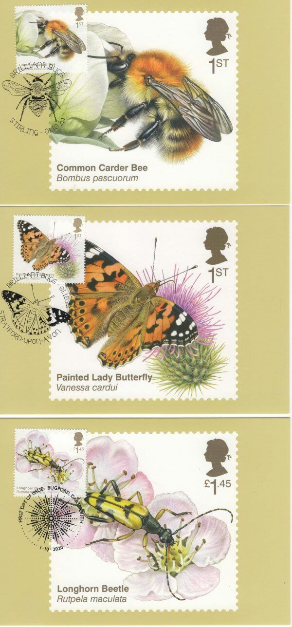 Brilliant Bugs Stamp Cards