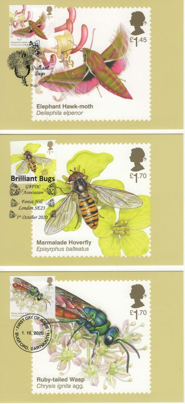 Brilliant bugs stamp card